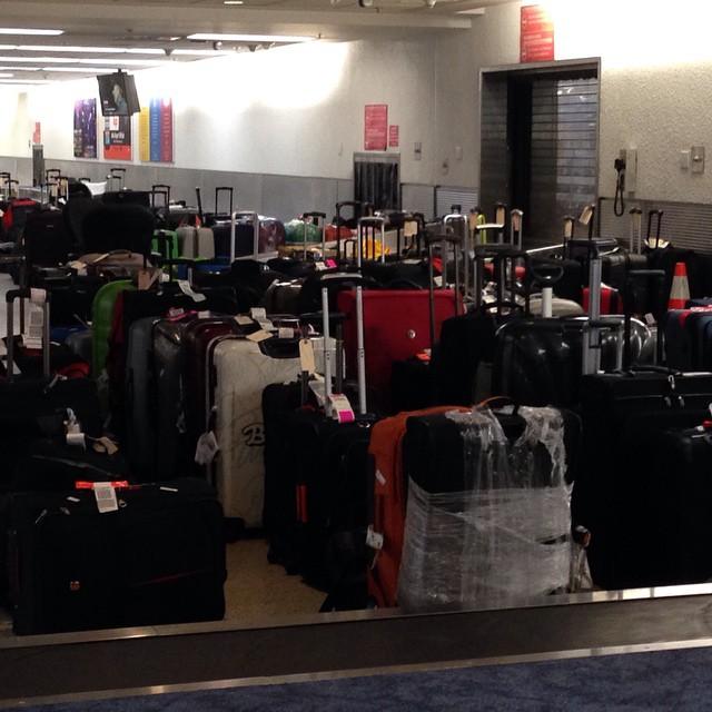 Somebody lost your bag but it's here in Miami/ Alguien perdió tu maleta pero está aquí en Miami...si la encuentras